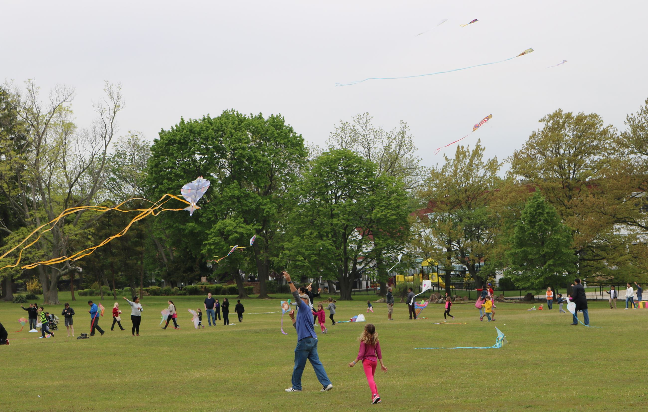4th Annual Kite Day